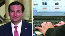Sen. Cruz: Online sales tax would 'hammer' small businesses