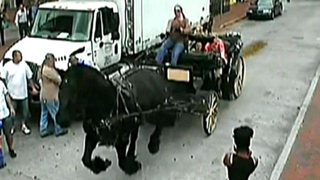 Spooked carriage horse runs wild with passengers on board
