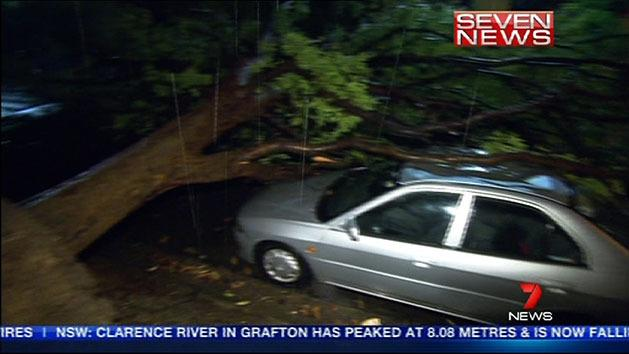 Heavy rain and winds hit Sydney