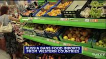 Russia bans Western food imports