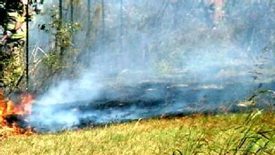 Dry Conditions Fuel Brush Fires