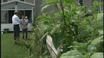 Foreclosed East Petersburg home creates issues for neighbor
