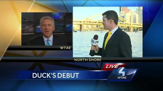 Giant rubber duck floating toward North Shore