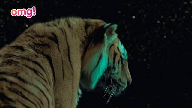 Rafe Spall gushes about working with Ang Lee on Life Of Pi