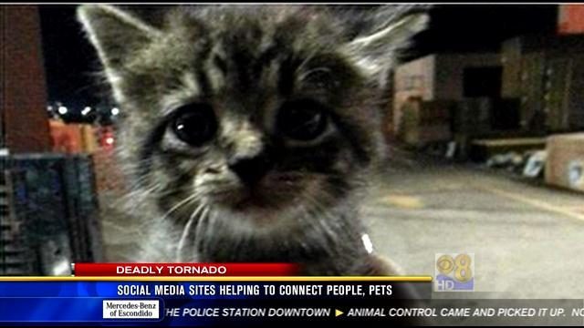 Social media sites helping to connect people, pets