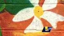 New Baltimore murals paint picture of Arabbers