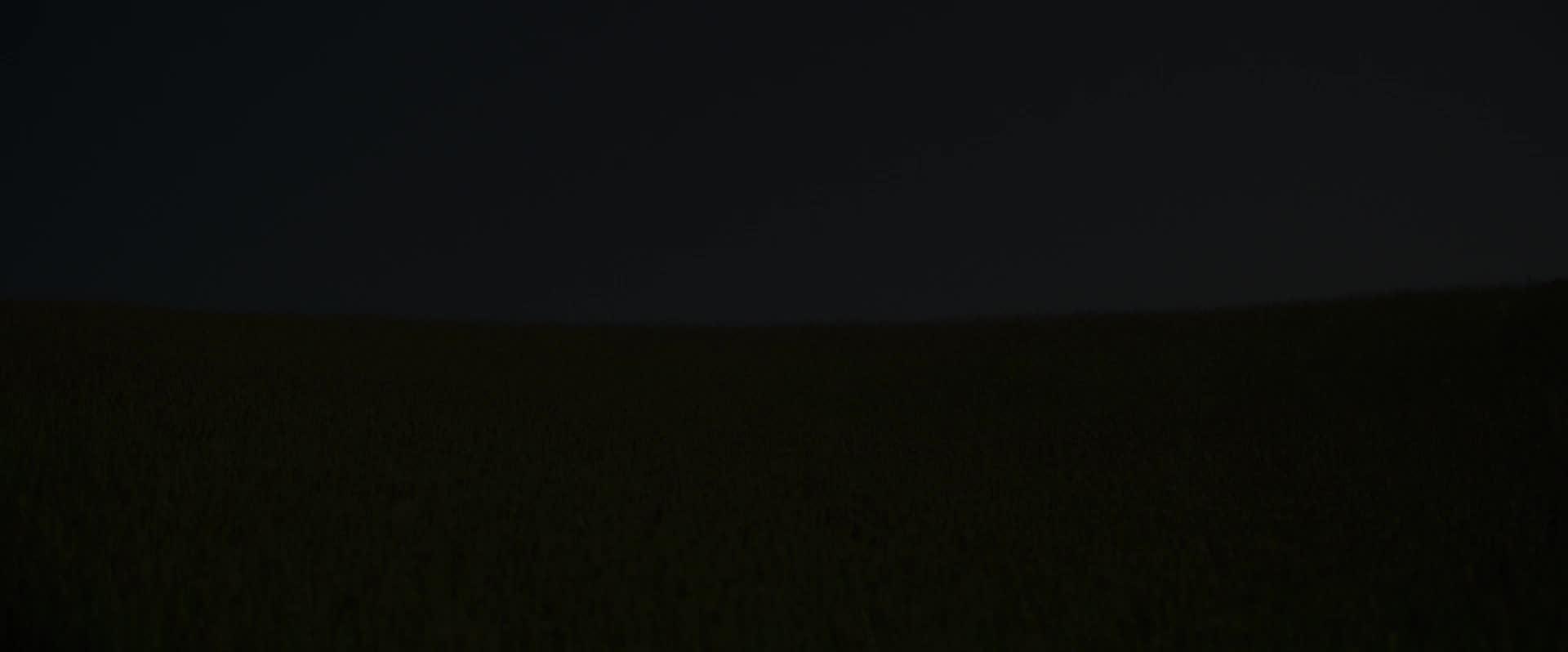 《花木蘭》電影預告