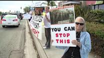 Animal Rights Activists Protest Circus