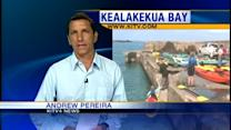 Kealakekua Bay reopens to tourists, but not locals