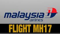Malaysia Airlines Describes Passenger Manifest