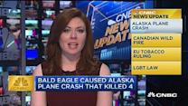 CNBC update: Bald eagle caused plane crash that kills 4