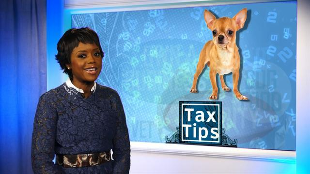 Tax tips: What you can and can't write off