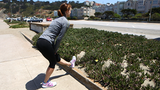 Don't Let Leg Cramps Cramp Your Style on Race Day