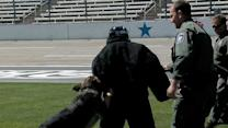 Biffle enjoys Dog Day Afternoon at TMS