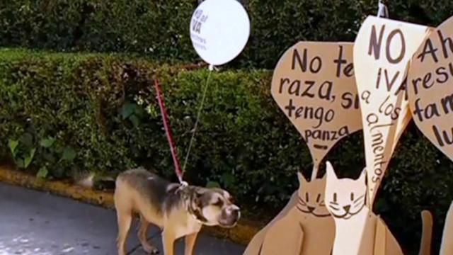 Pooches protest proposed tax on pet food