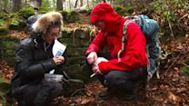 Geocaching, A Treasure Hunt In The English Countryside, 'A Broad Abroad'